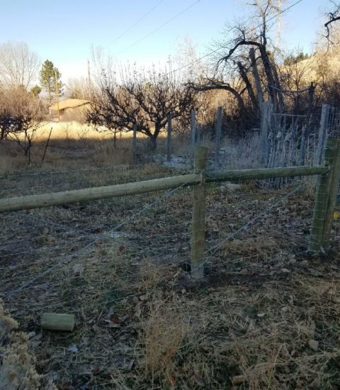 Agricultural Fencing Options